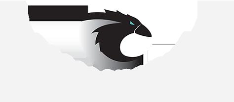 Crow Computing